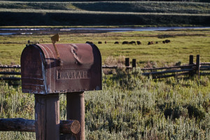 Posting the Mail at Lamar Buffalo Ranch - photo credit: lowjumpingfrog via photopin cc