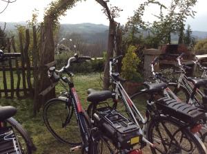 bici in Casentino