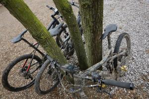 davide_grimoldi_bike details_25